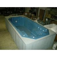 Hot tub swim spa swimming pool outdoor pool new type for Types of hot tubs