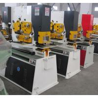 Quality Q35Y Combined Hydraulic ironworker Machinery , Steel Hole Punch Machine for sale
