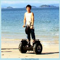 China Two wheel self balancing electric scooter 1000w cheap on sale