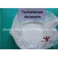 Medical Super Testosterone Steroid , Test D Steroids For Muscle Gain CAS 5721-91-5 Manufactures
