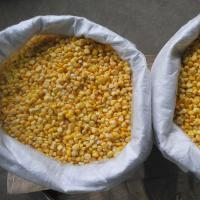 FDA Certified IQF Frozen Vegetables/ Frozen Whole Kernel Sweet Corn For Supermarkets Manufactures
