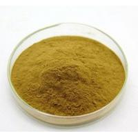China Plant Extracts Powder / Male Enhancer Steroids Damiana Turnera Diffusa For Health Care Product on sale