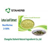 Herbal Weight Losing Raw Materials , Flavonoids Plant Lotus Leaf Extract Powder Manufactures