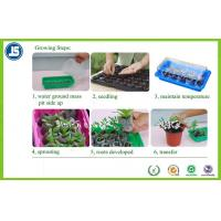 Black Plastic Seeding Tray Or Propagation Tray PS / PE For Greenhouse Manufactures
