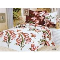Reactive Printed Cotton Bedding Set 003 Manufactures