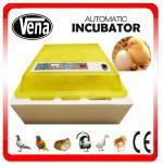 48 Eggs va-48 mini incubator Full automatic mini chicken incubator Manufactures
