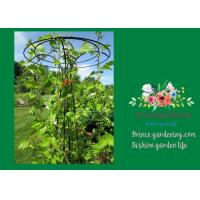 Flower Supports Plant Stakes , Tall Plant Support For Climbing Plants Manufactures