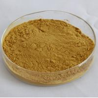100% NATURAL EURYCOMA LONGIFOLIA EXTRACT POWDER Manufactures