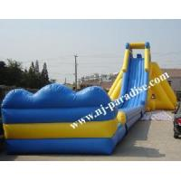 Giant Inflatable Water Slide (CS-0102) Manufactures