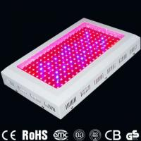 High Power 200W 440 * 340 * 70mm LED Hydroponics Indoor Plant Grow Lighting For Garden Manufactures