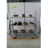 China Garden Center Dutch Flower Trolley / Flower Display Trolley Racks 1350*565*1900 mm on sale