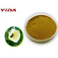 Safety Pharmaceutical Grade Okra Extract Powder Activate Male Central Nervous Manufactures