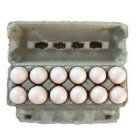 Qisheng egg tray machine egg tray production line paper tray manufacturing machine egg carton machine price Manufactures