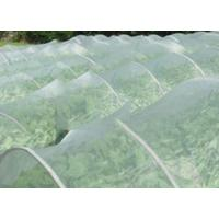 China Greenhouse Anti Insect Mesh Netting Pure HDPE 50 Mesh 125 gsm Insect Screen Mesh on sale