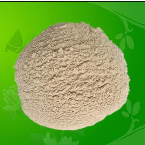 Quality Probiotics Bacillus Licheniformis for Feed Additives for sale