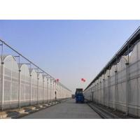 Sound Insulation Polycarbonate Sheets Greenhouse Anti Fog Surface Design Free Samples Manufactures