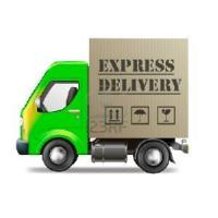 DHL UPS FedEx TNT Courier Freight Service Shipment Manufactures