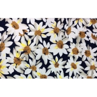 China Elastic Cotton 97% Spandex 3% Dyeing Printed Fabric on sale