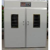 Hatching Machine Promotion Type Manufactures