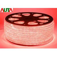Quality 120 Decorative Cool White LED Rope Lights For Hotel , LED Rainbow Light for sale