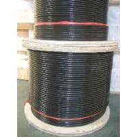 PVC Coating Wire Rope (Aisi304, 316) Manufactures