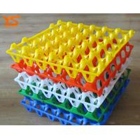PE Plastic Quail Chicken Egg Hatch / Incubator Tray For Sale WhatsApp:15638238763 Manufactures