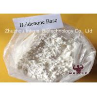 Hormone Bulk Boldenone Powder Most Effective Anabolic Steroid For Veterinary 846-48-0 Manufactures