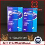 Hookworms Tapeworms Intestinal Worms Medicine Praziquantel Tablet Manufactures