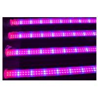 China Full spectrum 18w T8 led grow light for plant growth , flower and vegetable on sale
