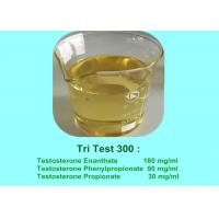 Bulking Cycle Testosterone And Anabolic Agents Steroid For Muscle Growth Tri Test 300 mg/ml Manufactures