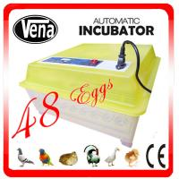 China High hatching rate automatic Hatching Peacock Eggs Incubator VA-48II for sale on sale