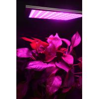 Energy Efficiency Hydroponic Led Grow Lights For Indoor Gardening Alluminum Material Manufactures