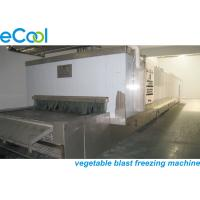 China Environment Protective Multipurpose Cold Storage With Long Using Time for sale