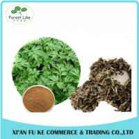 China Chinese Herb Extract Mugwort Leaf Extract 5:1- 20:1 on sale
