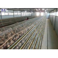 Simple Q235 Quail Laying Cage 800 Birds Capacity Long Working Using Life Manufactures