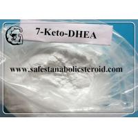 7 Keto DHEA Raw Steroid Powders CAS 566-19-8 7-Keto-Dehydroepiandrosterone Hormones Manufactures