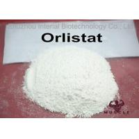Fat Reduce / Weight Loss Steroids Orlistat Powder CAS 96829-58-2 With GMP Standard Manufactures