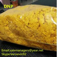 China DNP Raw Powder 2 4-Dinitrophenol CAS 51-28-5 For Weight Loss Yellow Color on sale