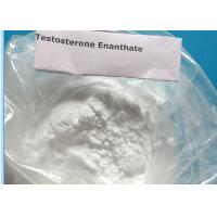 Testosterone Enanthate CAS 315-37-7 99% Purity Body Building Steroid Powder Quick Effects Manufactures