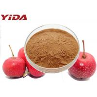 C6H13NO3 Hawthorn Extract Powder For Men And Women Prevents Atherosclerosis Manufactures