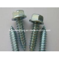 Hex Washer Head Self Drilling Screw/Self Tapping Screw (DIN7504) Manufactures
