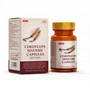 China Cordyceps Sinensis Capsules-Chinese herbal medicine at low price on sale