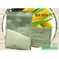 IBA Plant Root Promoter Indole Butyric Acid Plant Growth Hormone Auxin Manufactures