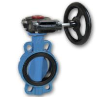 Worm gear operated 4 ANSI groove butterfly valve Manufactures