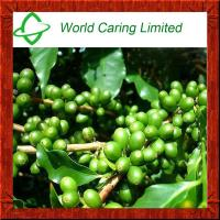 Green Coffee Bean Extract Total chlorogenic acid 50%-70% herbal extract for weight loss Manufactures