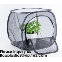 Agricultural Greenhouses for Tomato Planting,Pop-Up Tomato Plant Protector Serves as a Mini Greenhouse to Accelerate Gro Manufactures