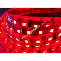 disco lighting decoration RGBW LED DMX light Manufactures