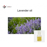 Wholesale China made Lavender Oil Manufactures