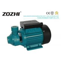 PM Series Single Phase Peripheral Pump 0.37-0.75KW PM-45 PM-50 PM-60 Manufactures