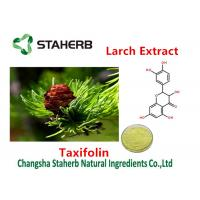 Cas No 480-18-2 Larch Extract All Natural Extracts Taxifolin 80%-98% Purity Manufactures